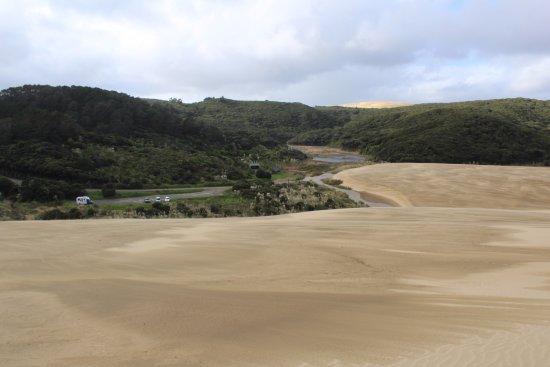 Pukenui, New Zealand: Vue des dunes