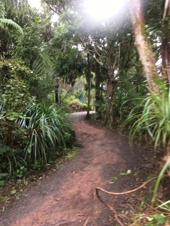 Auckland Region, New Zealand: photo2.jpg
