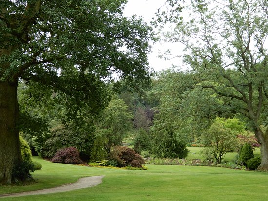 Pond Picture Of Rhs Garden Harlow Carr Harrogate Tripadvisor