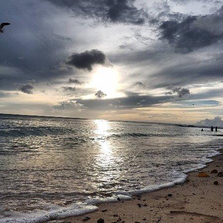 Pigeon Point Beach: IMG_20170613_184254_247_large.jpg
