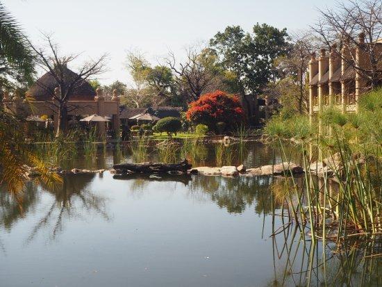 The Kingdom at Victoria Falls: lago interior del hotel junto a la piscina