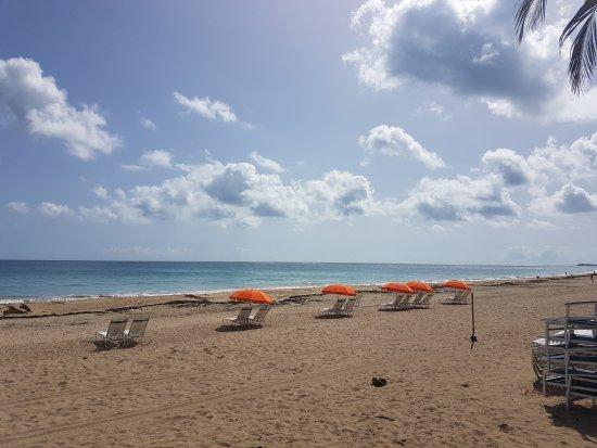 Doubletree by Hilton San Juan: Ocean Park Beach