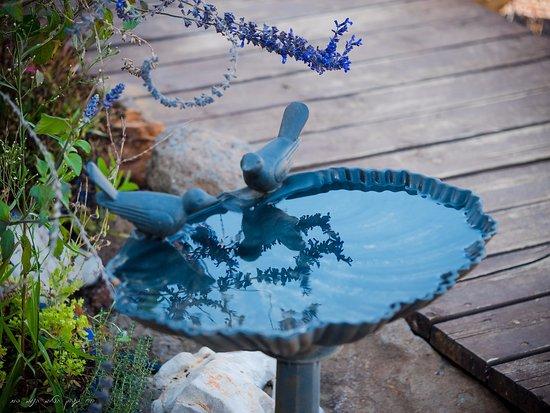Nimrod: garden in the Rain Bell suite