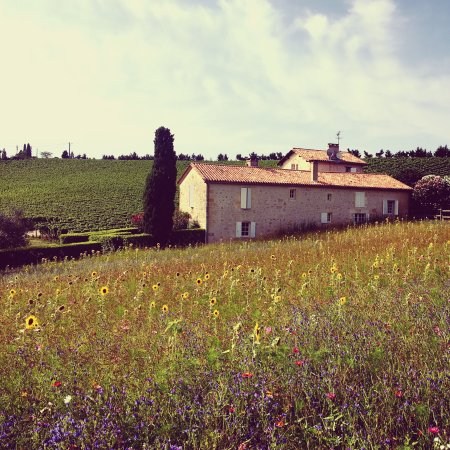 Langoiran, Frankrijk: photo0.jpg