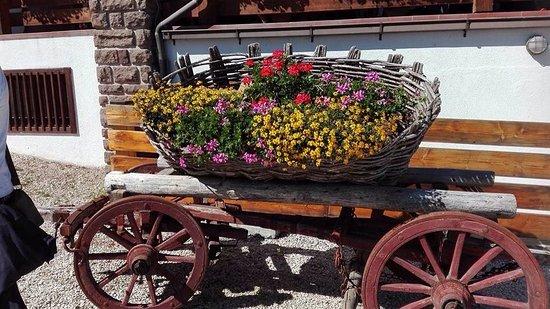 Varena, Italy: photo8.jpg