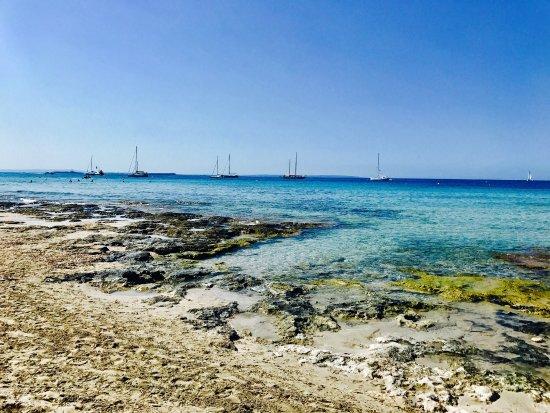 Sa Trinxa Beach Bar: photo2.jpg
