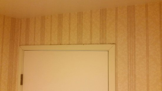 Minden, NV: mold and dirt above the bathroom door