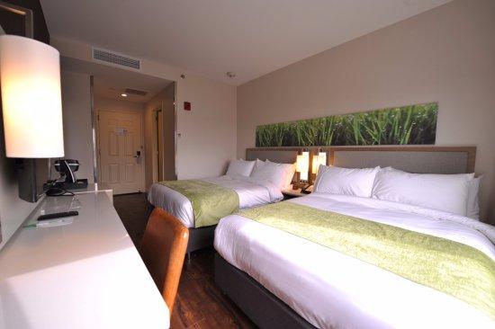 Wyndham Garden Fresh Meadows Flushing Updated 2018 Hotel Reviews Price Comparison Queens
