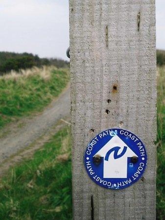 Northumberland لوحة