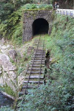 Gomi Tunnel