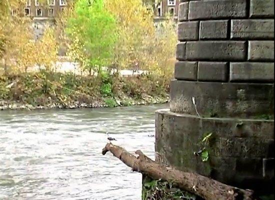 Fiume Tevere: River Tiber