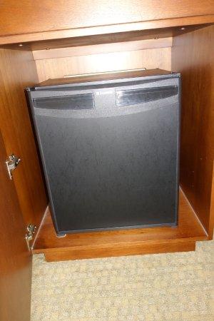 The Westin San Diego Gaslamp Quarter: Refrigerator