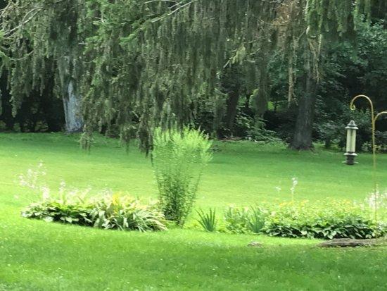 Hillsdale, NY: Property