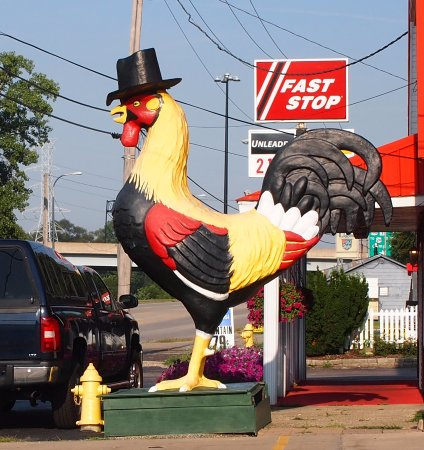 Rooster in a Top Hat