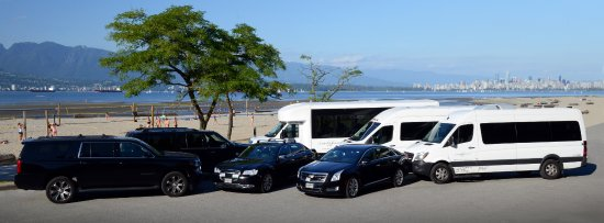 Luxury Transport - Day Tours: Some of our fleet