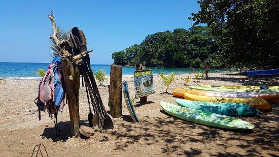 Punta Uva, Costa Rica: Kayacs...botes... bicis..en fin... una playa para disfrutar