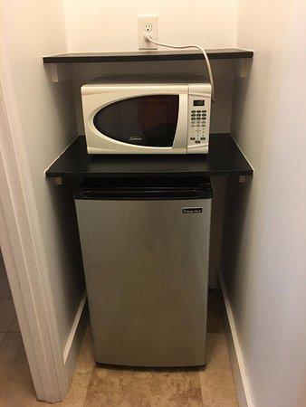 James Hotel: Fridge and microwave