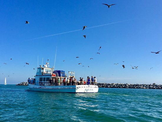 DANA WHARF SPORT🎣 and 🐳WATCHING.... SUM FUN leaving the Dana Point Harbor!