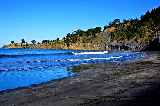 Shelter Cove, Californien: Beach