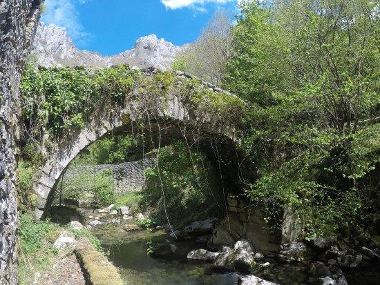 Tielve, España: GOPR1054_1493577693708_high_large.jpg