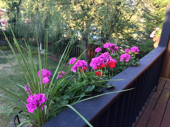 Good Medicine Lodge : Balconies all enhanced with flower boxes