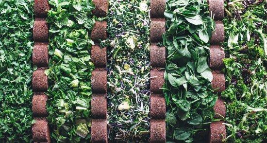 Bethesda, MD: Farm Fresh Salads
