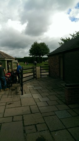 Wheelock Hall Farm: kids play area at £5 a go
