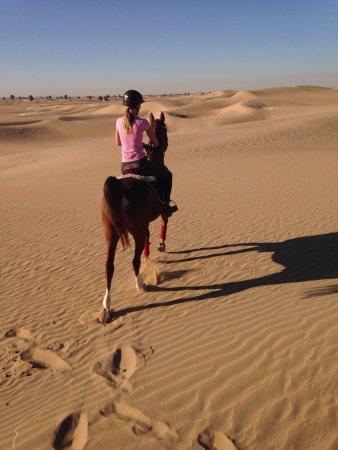 Al Sahra Desert Resort Dubai United Arab Emirates What