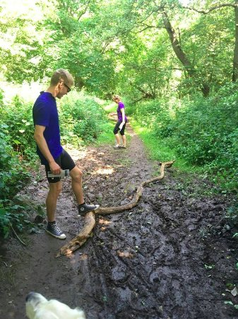 Tranekaer Slot: Ja, hvis det regner så bliver der mudret i en skov - så vask skoene når du kommer hjem!