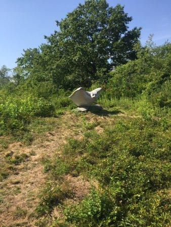 Wells Reserve at Laudholm : photo0.jpg