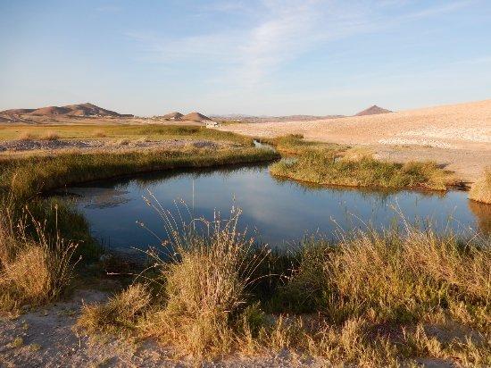 Tecopa, CA: Natural hot springs