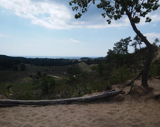 เสากาตัค, มิชิแกน: View from the top of one of the dunes where Ian stopped so we could take pictures.