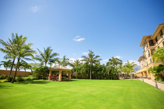 Courtyard Maui Kahului Airport: Outdoor Lawn & Gazebo