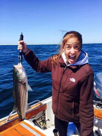 Chatham sport fishing all you need to know before you go for Fishing license ma