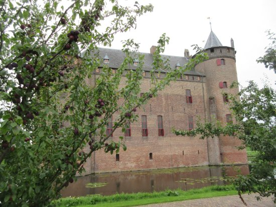 Muiden, The Netherlands: Muiderslot Castle as seen from the plum orchard