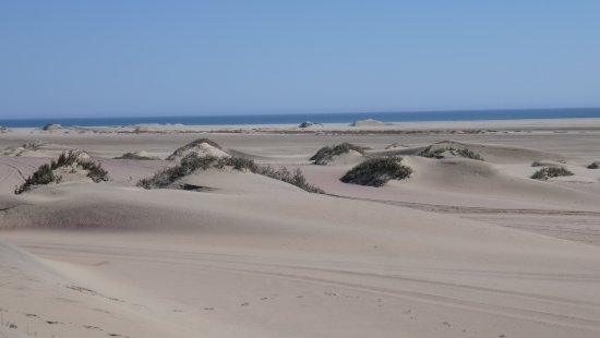 Sand Waves - Namibia: Sandwich Harbour