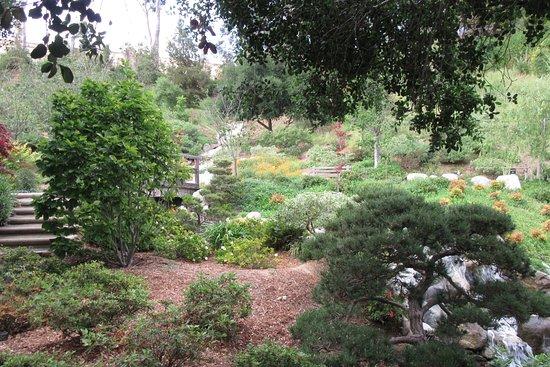 Japanese friendship garden san diego ca top tips for Japanese friendship garden