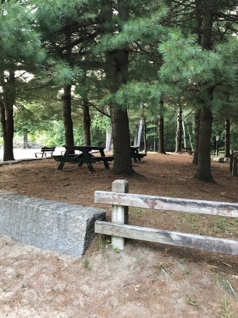 Picnic tables near the beach - Picture of Breakheart Reservation ...