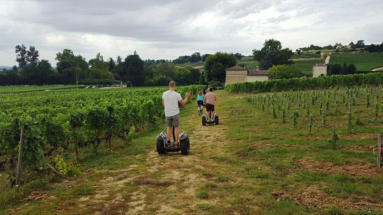 Saint-Laurent-des-Combes, Frankrijk: Segway tour in the vineyards