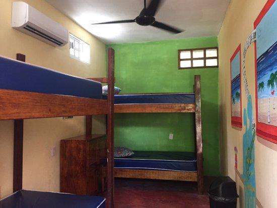 Foto de Hostel Sheck