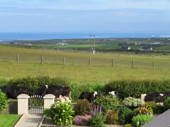 Quilty, Ierland: The view to the sea from our room at Sea Crest Farmhouse