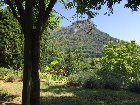 La Colline de Vence: photo0.jpg