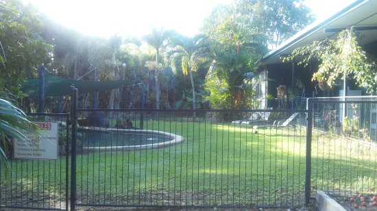 Daintree Wild Bed and Breakfast Φωτογραφία
