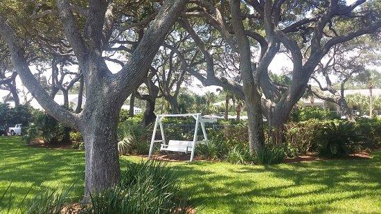 The Beachview Club foto