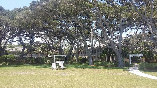 The Beachview Club: Relax under our beautiful canopy of Live Oaks!