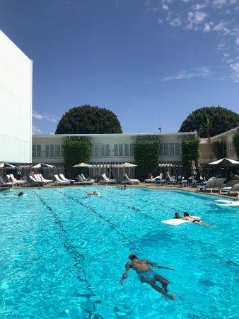 The Beverly Hilton: photo1.jpg
