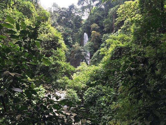 Grecia, Costa Rica: photo4.jpg