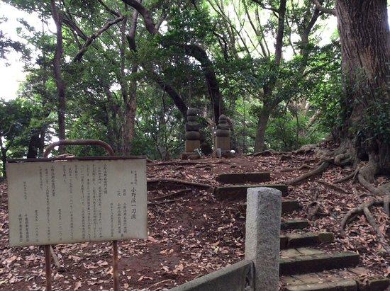 Grave of Ono Jiroemon Tadaaki and Tadatsuji
