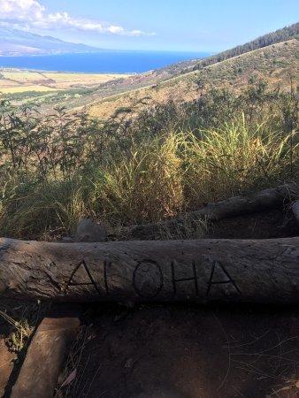 Flyin Hawaiian Zipline : photo0.jpg