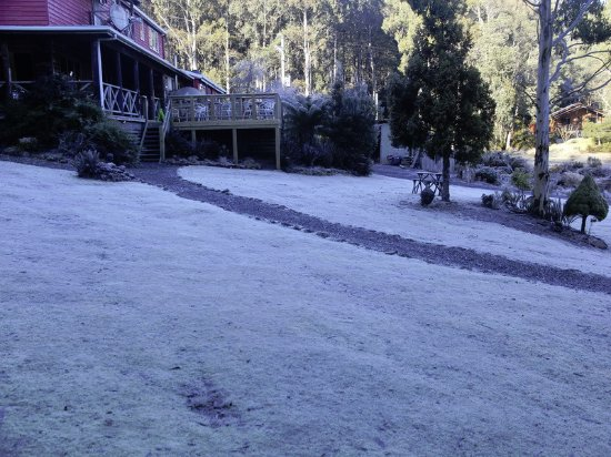 Moina, Australië: Frosty morning (-4 degrees).